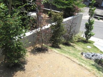 植物の緑と構造物のコントラストの写真