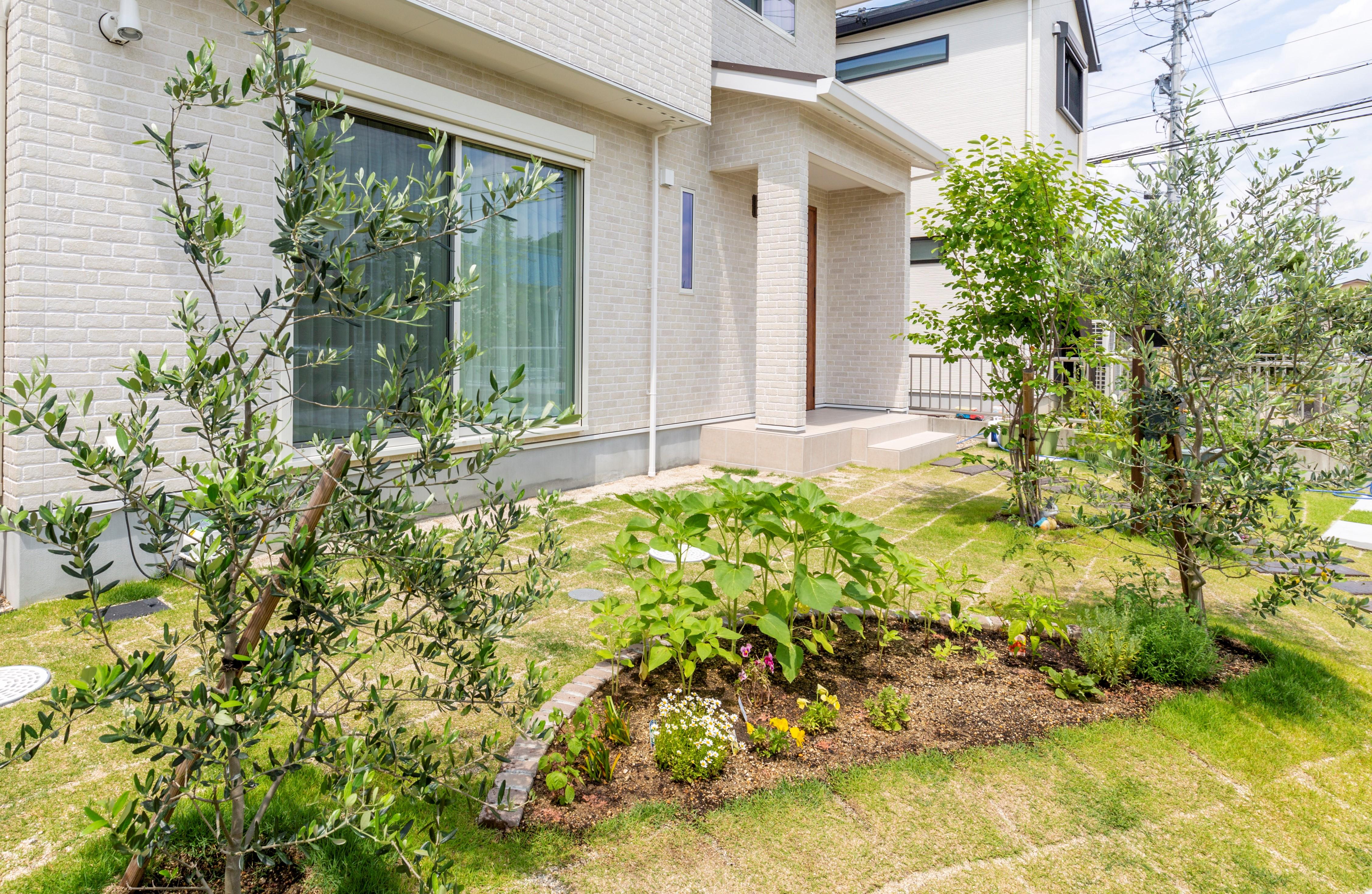 植栽スペースの写真