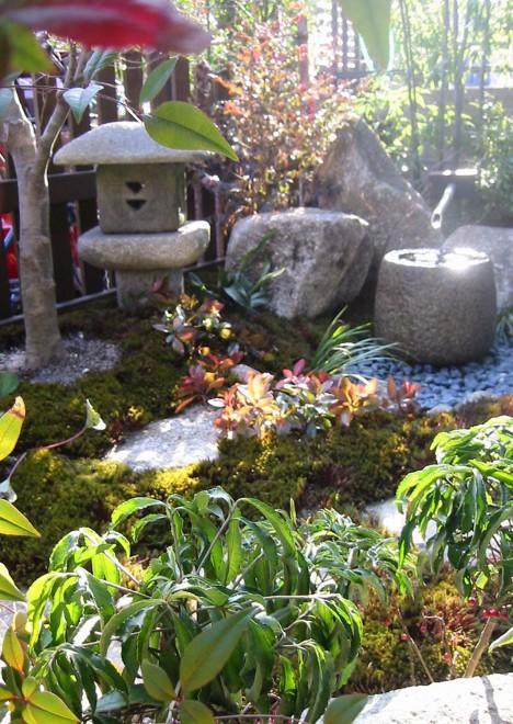 自然の温もりを感じる坪庭の写真