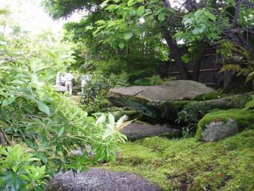 野趣あふれる庭の写真