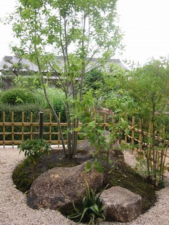庭園にはかかせない木々の写真
