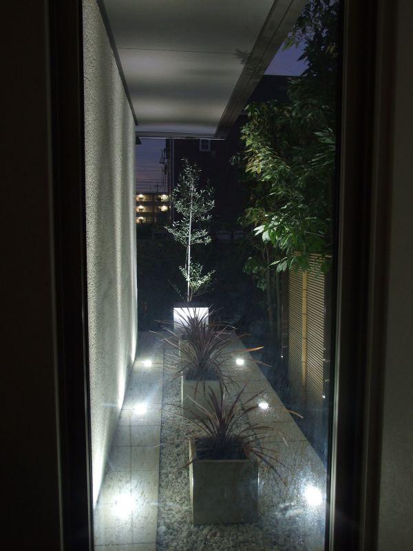幻想的な夜のライトアップの写真