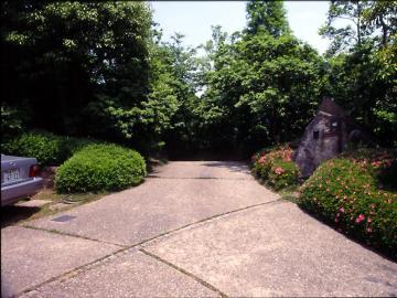 公道から見た邸内の風景の写真