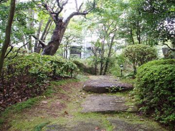 古道を登るような静かな情景の写真