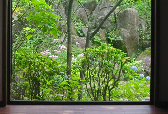 四季を感じる雑木の庭の写真