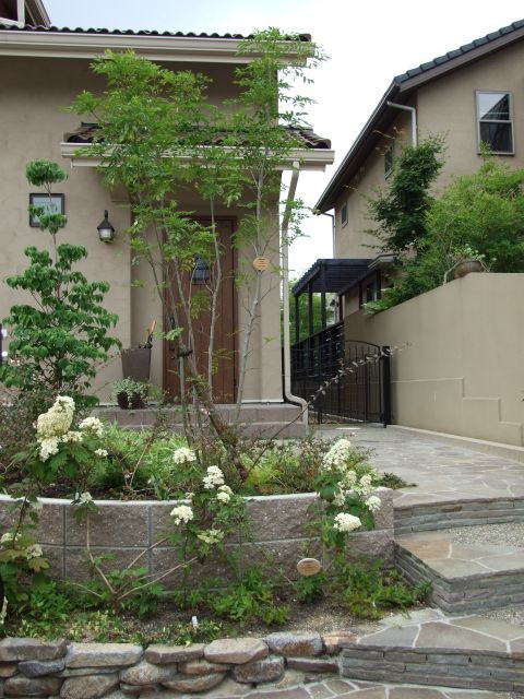 玄関正面にシンボルツリーの写真