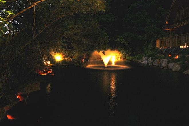 光が包む夜の景色の写真