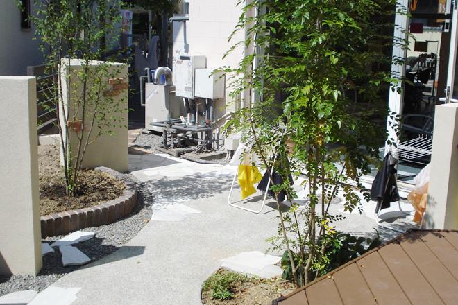 明るさを取り戻した庭のメイン写真